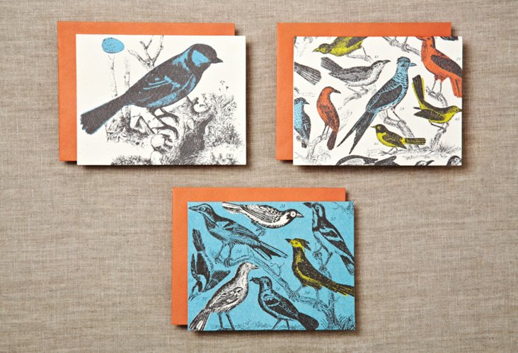 S/24 Ornithology Notecards