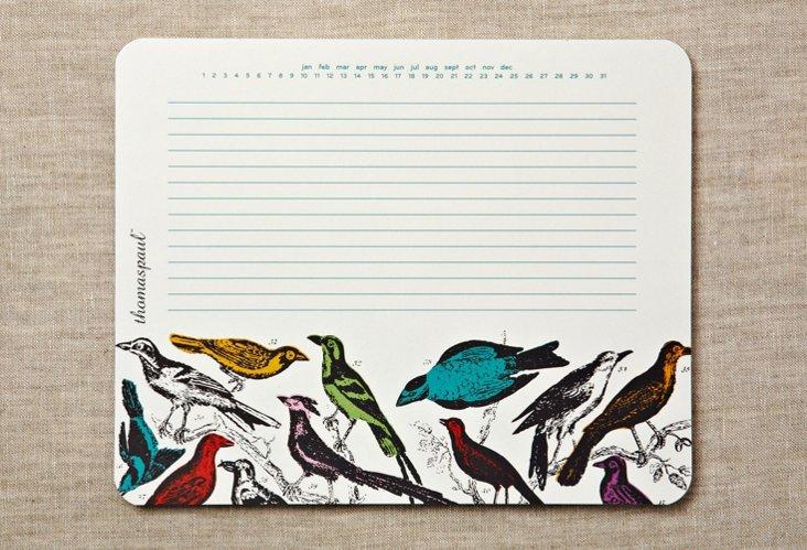 S/3 Ornithology Mouse Pds