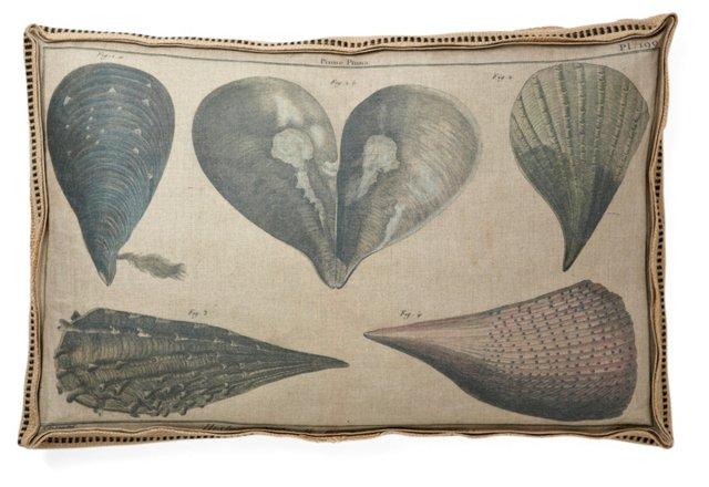Nantucket Mollusks 28x18 Pillow, Natural