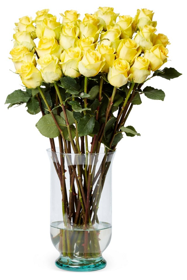 100 Premium Long Stem Roses, Yellow