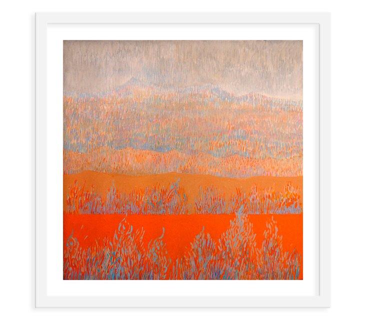 An Orange Field