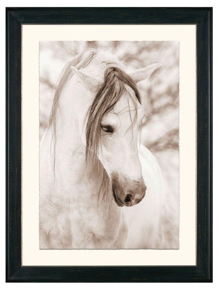 Thom Filicia, Profile of a White Horse