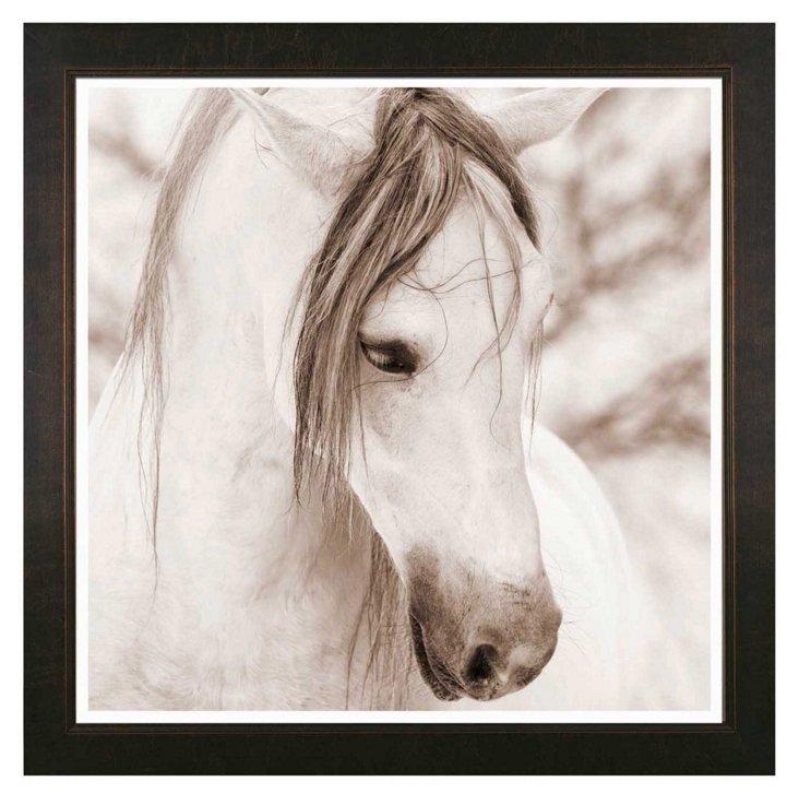 Thom Filicia, Horse II