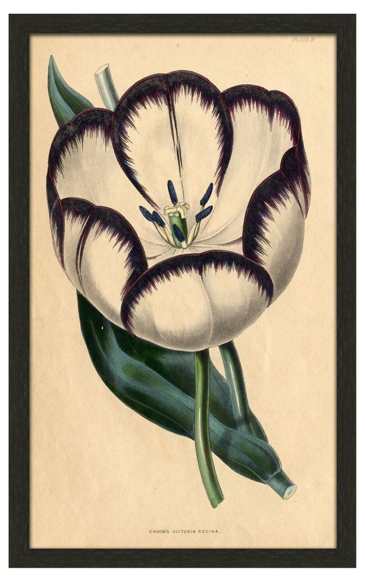 Purple Botanical II