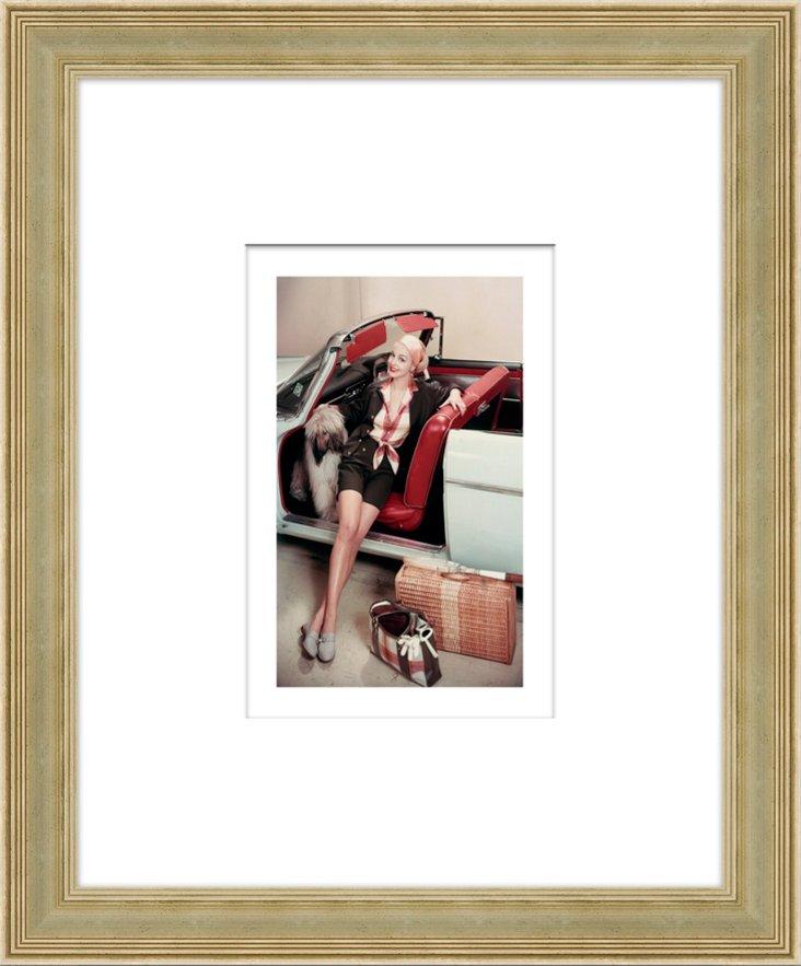 Glamour Magazine, Irish Wolfhound 1957