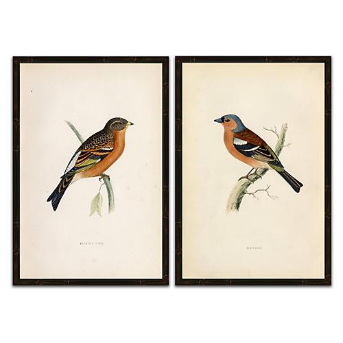 Birds Diptych
