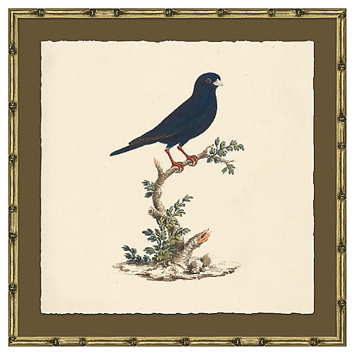Bird in Bamboo-Style Frame