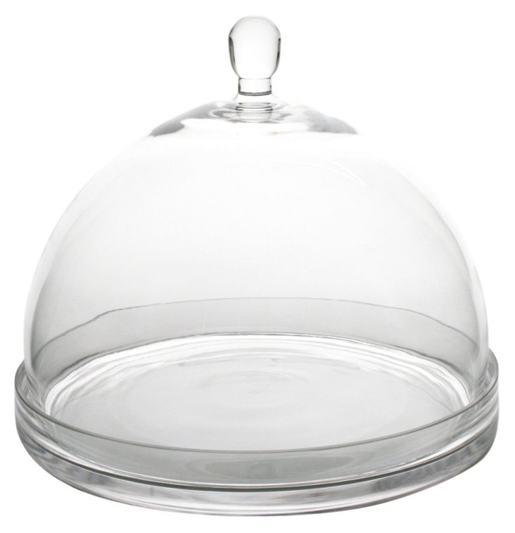 Glass Plate w/ Dome