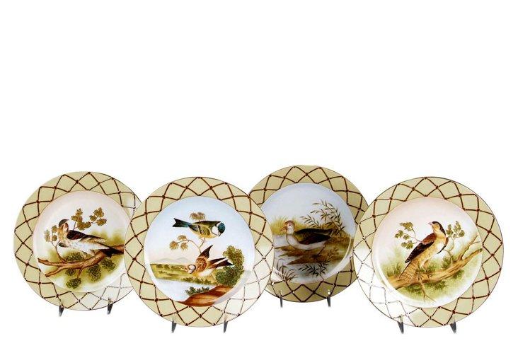 Set of 4 Porcelain Bird Plates