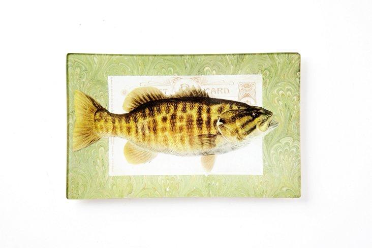 Bass Tray