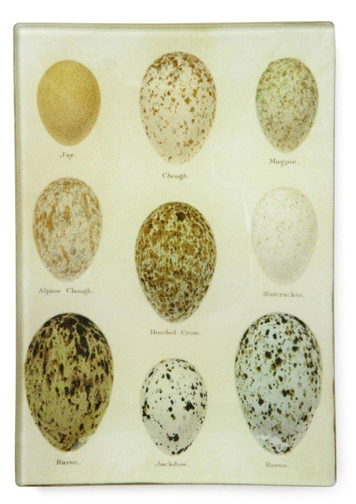 5x7Jay Eggs Tray