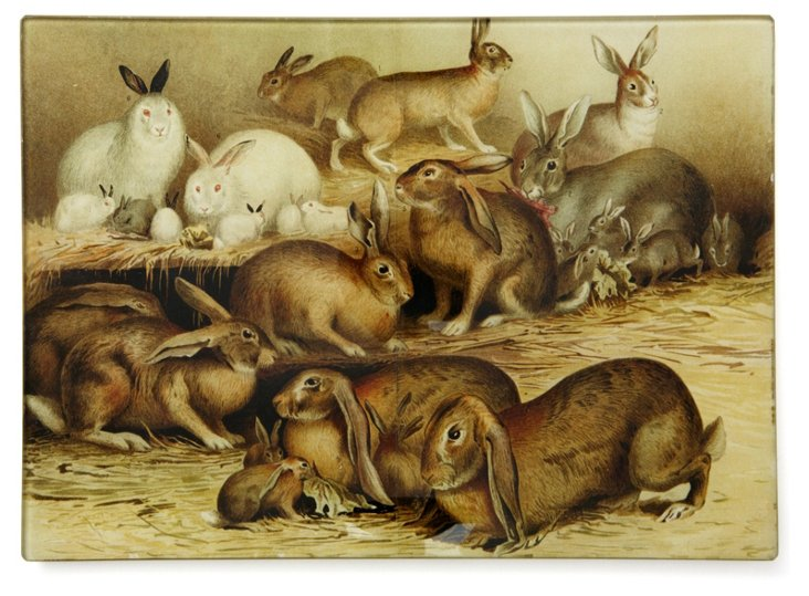 8x11 Hutch Full Of Rabbits Tray