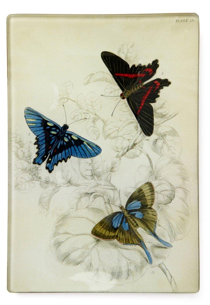 Butterflies Tray