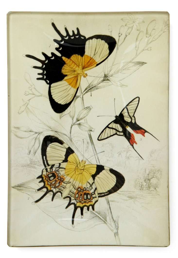 5x7 Black & Gold Butterflies Tray