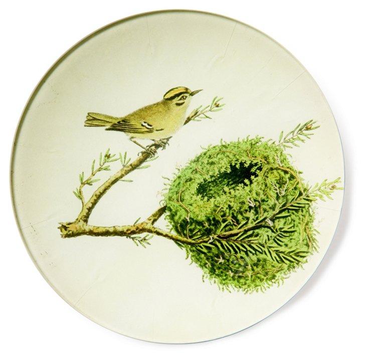 """6"""" Bird w/ Nest Tray, II"""