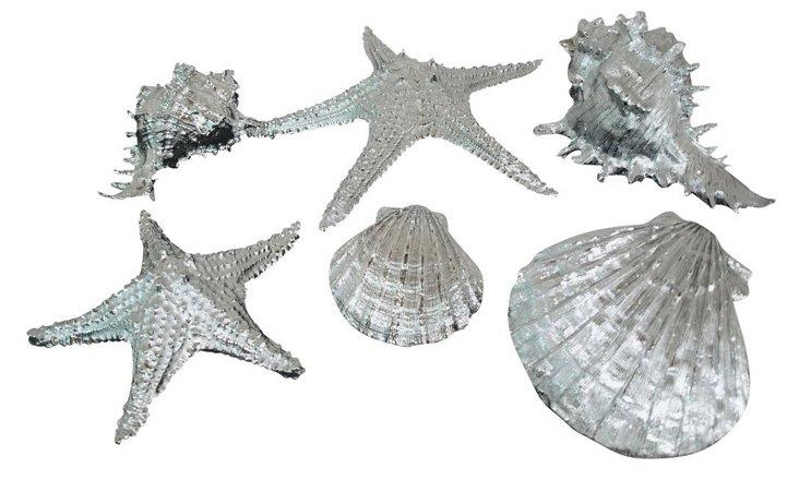 Resin Decorative Shells, Asst. of 6