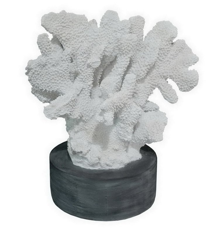 "14"" Resin Coral Objet, White"