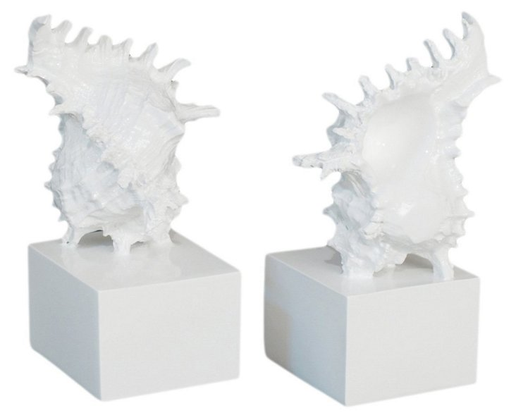 Pair of Conch Bookends
