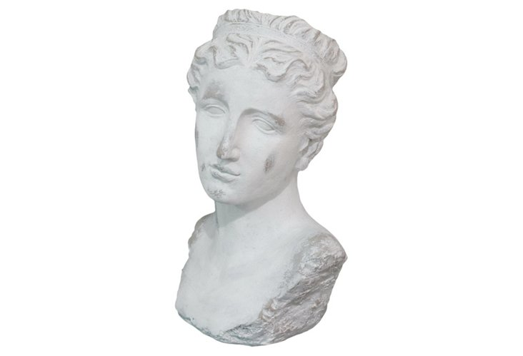 Lovely Woman Bust