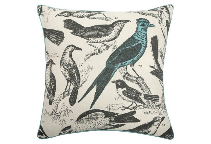 Ornithology 22x22 Pillow, Aqua
