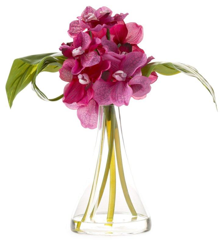 """15"""" Phalaenopsis in Glass Vase, Pink"""