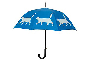 Cane Umbrella, Cat