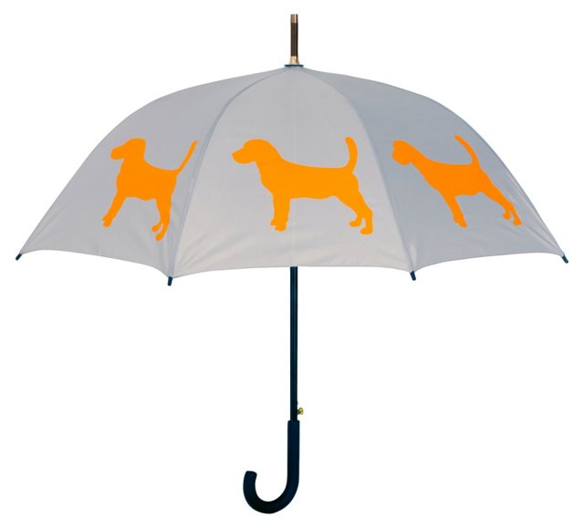 Cane Umbrella, Beagle