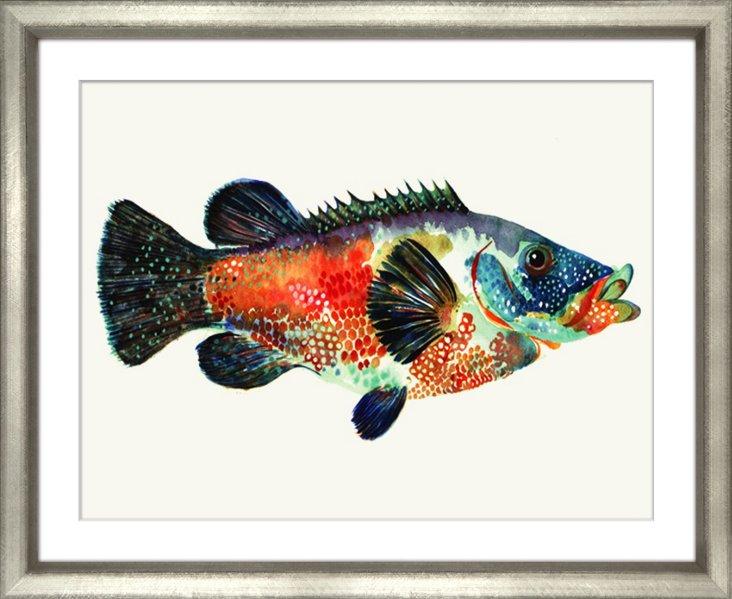 New England Fish I