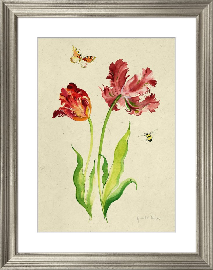 Tulips and Butterflies III