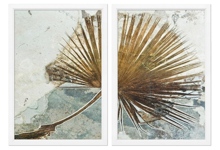 Ben Wood, Palm