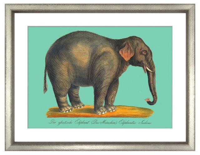 Karl Brodtmann, Elephant I