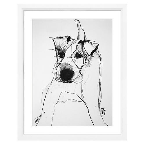 Valerie Davide, Dogs
