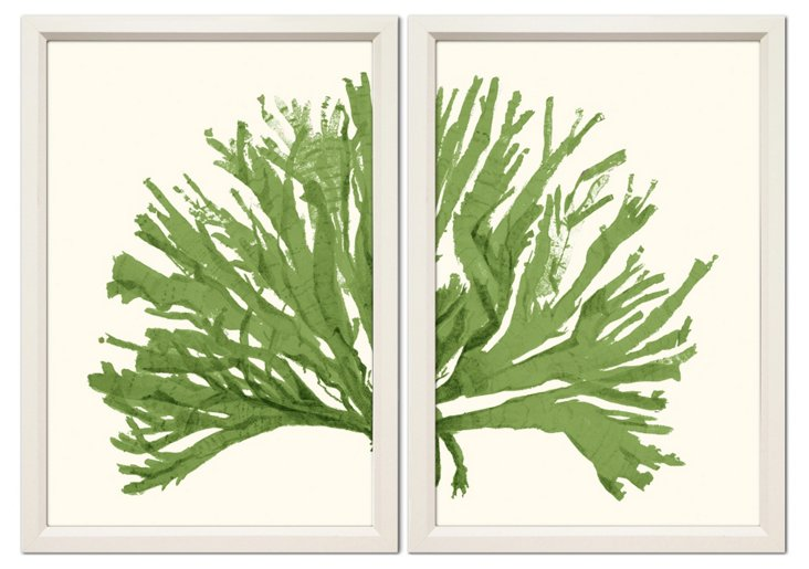 Green Coral Diptych