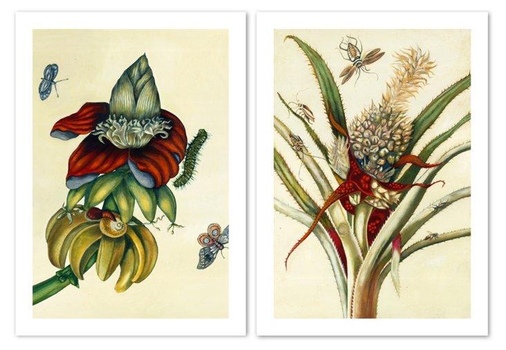 Exotic Botanicals Diptych