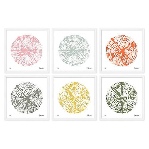 Felix Lucas, Geometric Circle