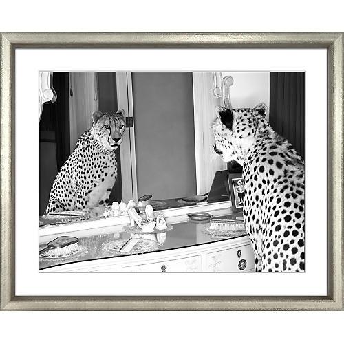 The Cheetah Who Shopped