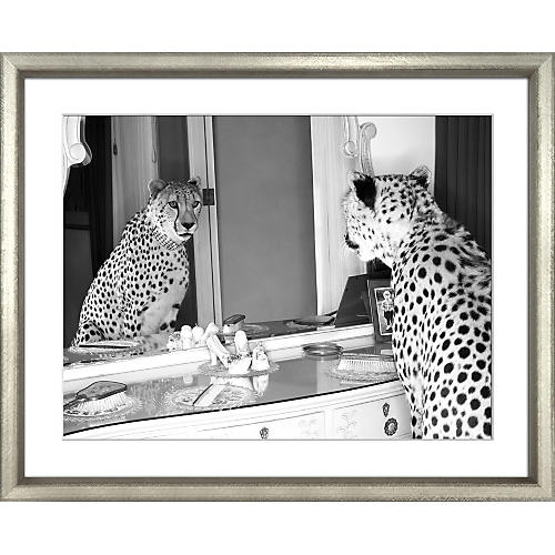 William Stafford, The Cheetah Who Shopped