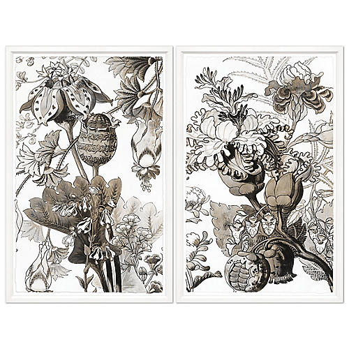 Sepia Japanese Flowers Diptych, William Stafford