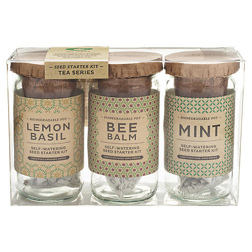 Eco Tea Series Starter Kit, Tea Series