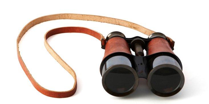 Voyager Binoculars