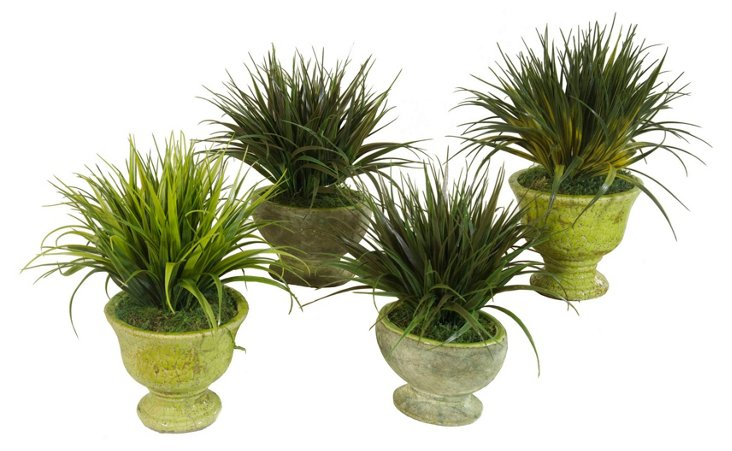 """S/4 13"""" Grass in Planters"""