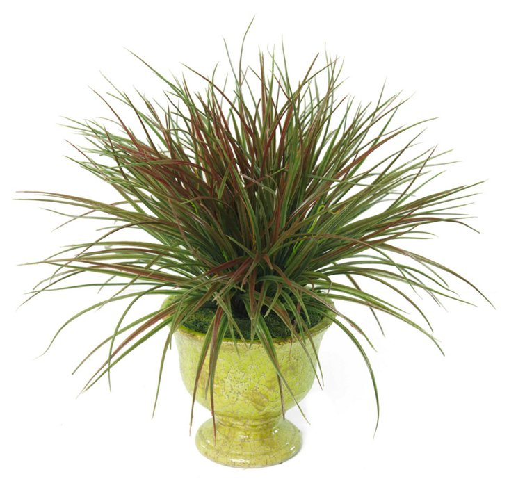 """19"""" Red Grass in Planter"""