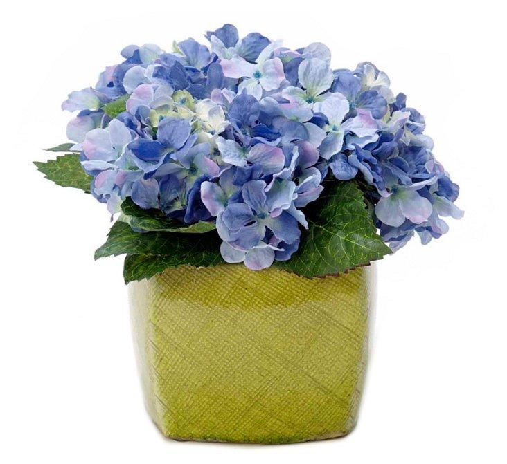 """9"""" Hybrid Hydrangea in Vase"""