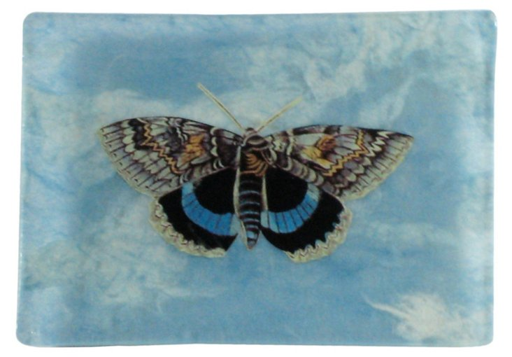 4x5 Butterfly & Blue Sky Tray
