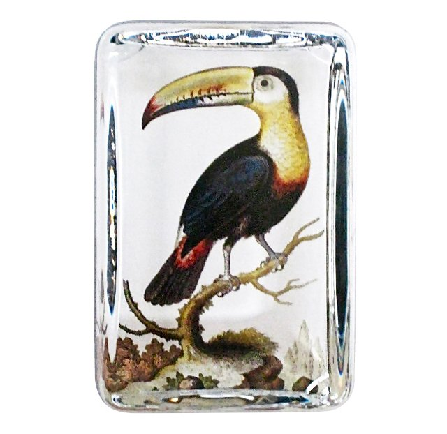Crystal Dome Paperweight, Toucan