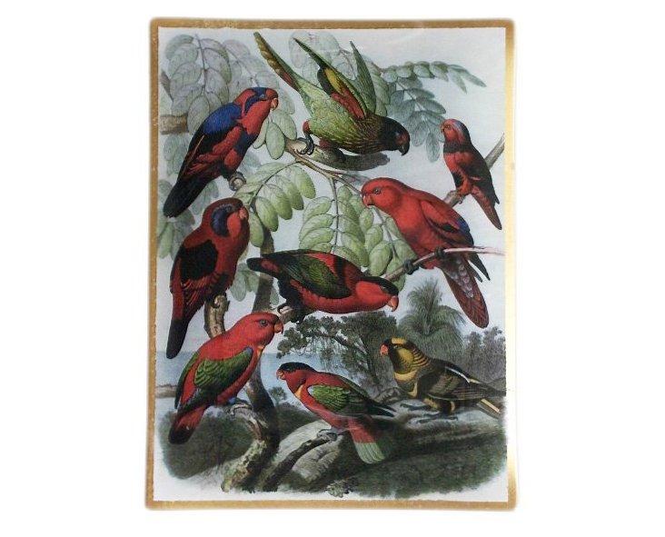 """9x12"""" Parrots Decoupage Tray"""