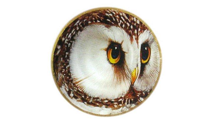 "9"" Owl Head Decoupage Tray"