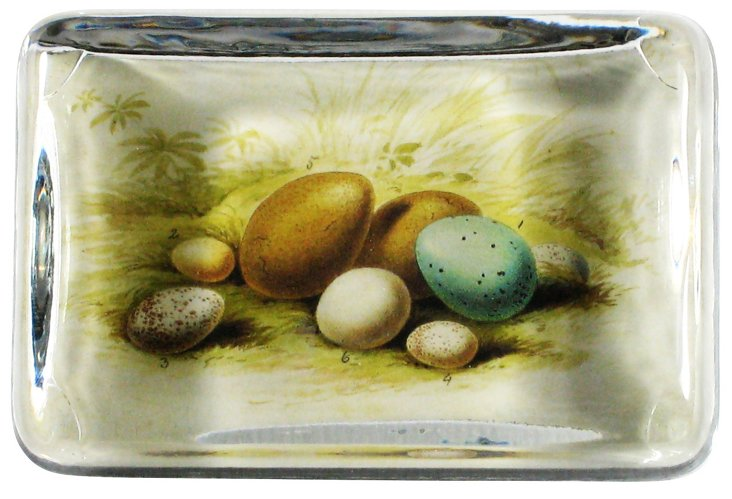 Eggs Paperweight