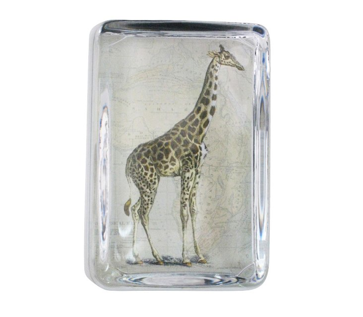 Giraffe/Map Paperweight