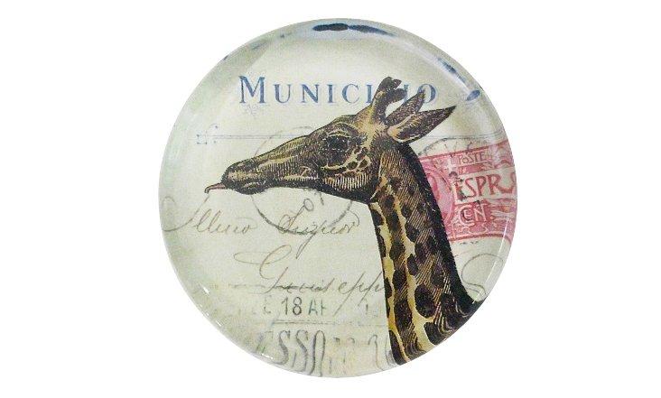 Giraffe Head Round Paperweight
